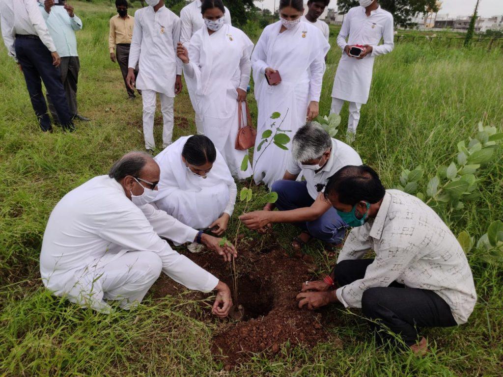Rajgarh (mp) :- vraksharopanh program 2020